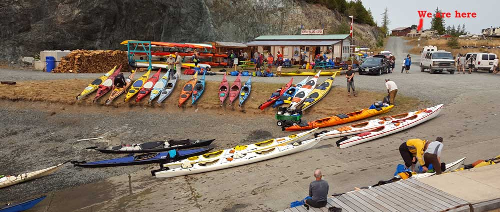 Always interested in all the activity at North Island Kayak